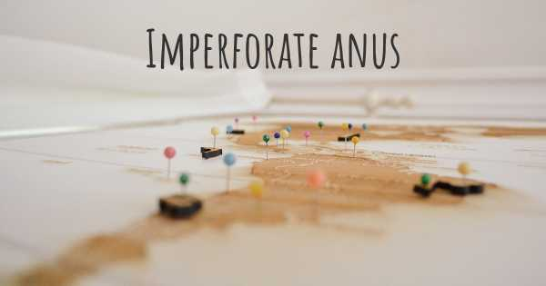 Imperforate anus