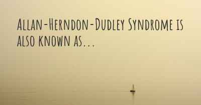 Allan-Herndon-Dudley Syndrome is also known as...