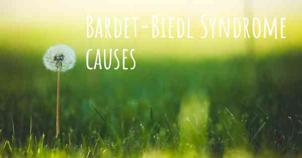 Bardet-Biedl Syndrome causes