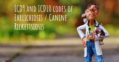 ICD9 and ICD10 codes of Ehrlichiosis / Canine Rickettsiosis