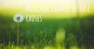 Minimal change disease causes
