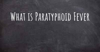 What is Paratyphoid Fever