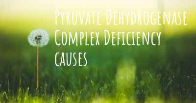 Pyruvate Dehydrogenase Complex Deficiency causes
