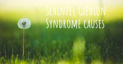 Schinzel Giedion Syndrome causes