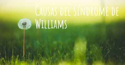 Causas del Síndrome de Williams
