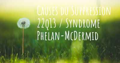 Causes du Suppression 22q13 / Syndrome Phelan-McDermid