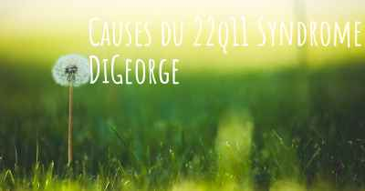 Causes du 22q11 Syndrome DiGeorge