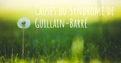 Causes du Syndrome de Guillain-Barré