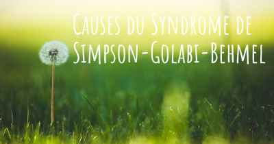Causes du Syndrome de Simpson-Golabi-Behmel
