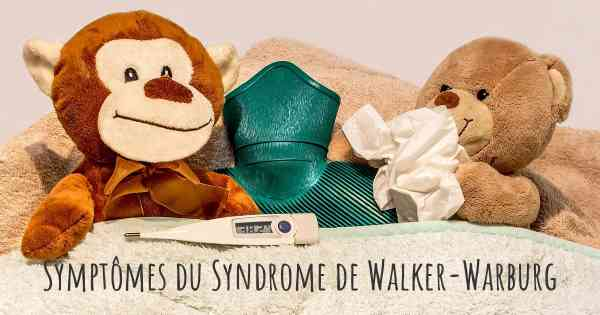 Symptômes du Syndrome de Walker-Warburg