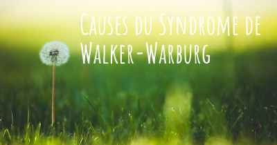 Causes du Syndrome de Walker-Warburg