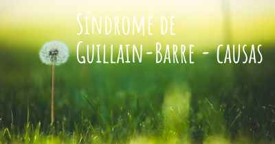 Síndrome de Guillain-Barre - causas