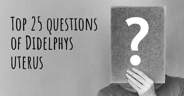 Didelphys uterus top 25 questions